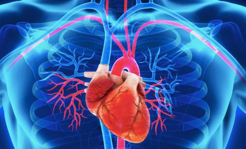 vínculo entre enfermedad cardíaca y diabetes